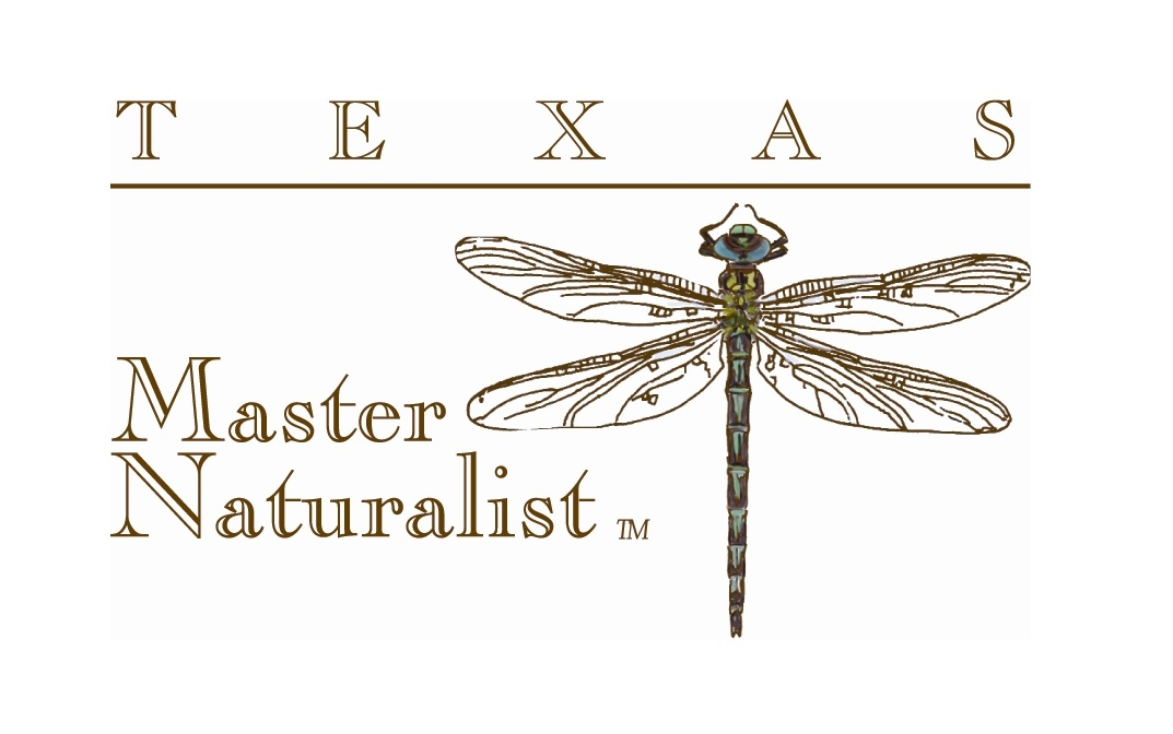Want to Become a Texas Master Naturalist? Apply Now!